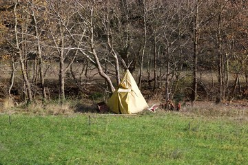 A yellow tipi style tent made of canvas at a river bank under deciduous trees at autumn in front of green grass field