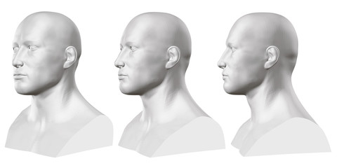 Vector set of isolated male busts of mannequins on white background. 3D. Male bust from different sides. Vector illustration
