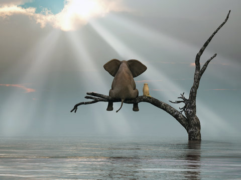 an elephant and a dog are sitting on a tree fleeing a flood