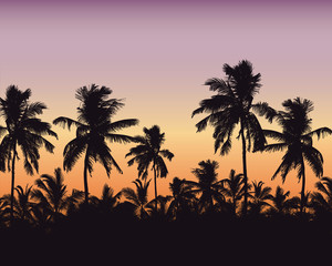 Realistic illustration of a palm forest. Purple orange sky with space for text, vector - fototapety na wymiar