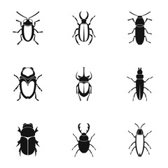 Insects beetles icons set. Simple illustration of 9 insects beetles vector icons for web