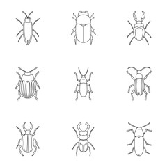 Species of beetles icons set. Outline illustration of 9 species of beetles vector icons for web