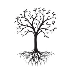 Black naked Tree with leaves and Roots on white background.
