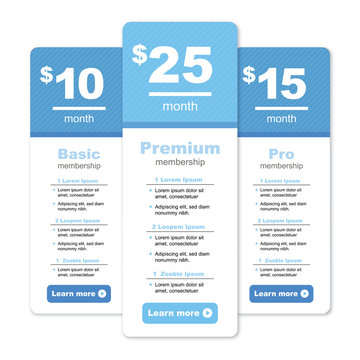 Premium Pricing and Membership Graphic w Different Options and Plans