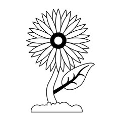 Sunflower plant cartoon isolated in black and white