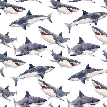 Watercolor shark vector pattern