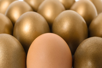 Golden eggs with different one as background, closeup