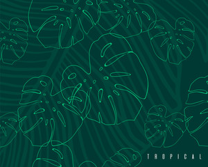 Tropical pattern with monstera leaves and banana leaf. Hand drawn exotic green background.