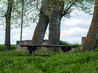 Wooden tables and benches in a picnic area between the grass