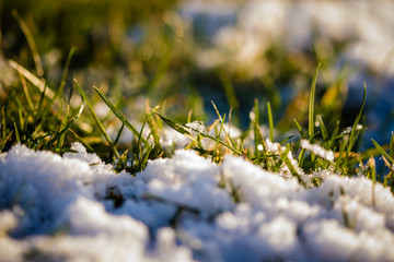 Snow and ice on the grass in close up