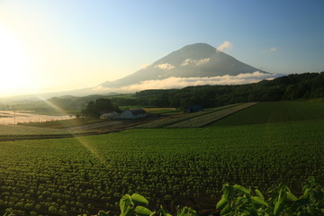 夕陽に映える 羊蹄山(シリベシ山、後方羊蹄山)