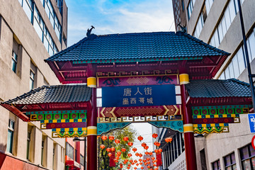 Chinese Arch Chinatown Mexico City Mexico