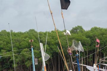 Egret Flying on Boat Harbor