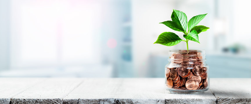 Plant Growing Out Of Coin Jar On Table In Office -  Investing / Business Success Concept