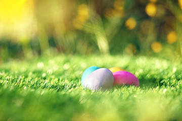 Collection of colorful Easter eggs in grass