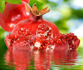 Fototapete - image of pomegranate in water closeup