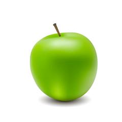 Vector illustration for green apple nuture food organic vegetable organic