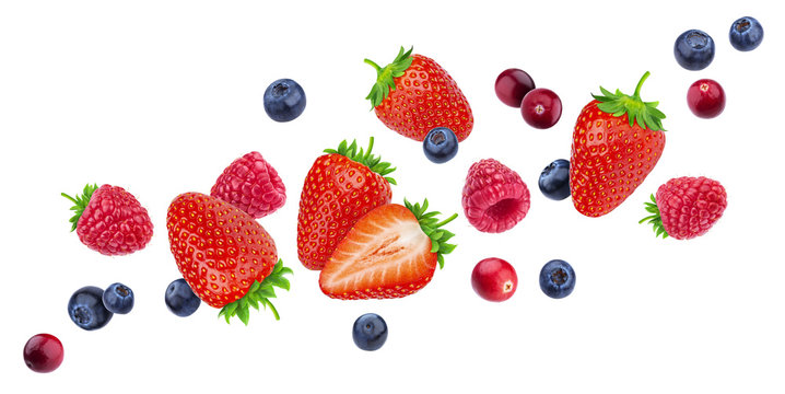 Flying berries isolated on white background with clipping path, different falling wild berry fruits, collection