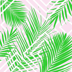 Spoed Fotobehang Tropische Bladeren Vector tropical palm leaves on pink background