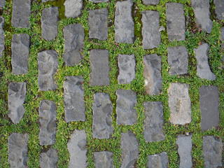 Grass Growing Between Stone Footpath Bricks Background