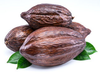 Cocoa pods with cocoa leaves isolated on a white background.