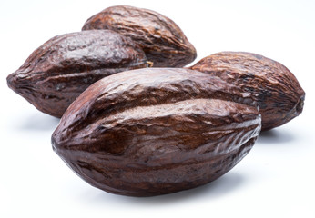 Brown cocoa pods isolated on a white background.