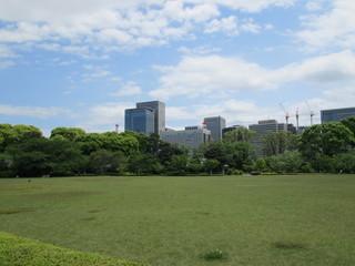 Fototapeta 都会の公園