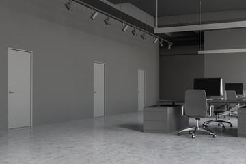 Gray open space office corner with doors