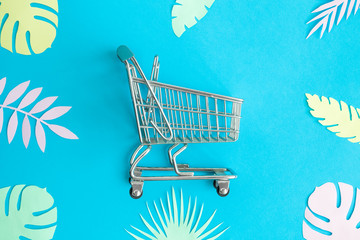 Flat lay of shopping cart and multicolored leaves abstract.