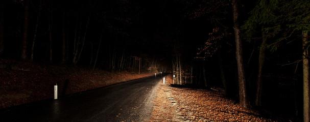 Waldweg im dunkeln. Waldstraße bei Nacht. Forest road at night.