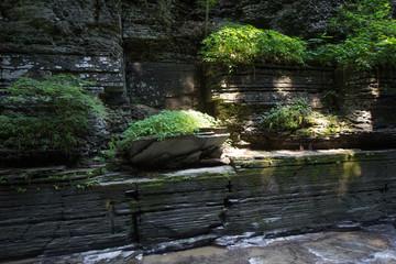 Enfield Glen, Robert Treman State Park, New York