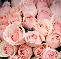 Fototapete - Fresh pink roses bouquet flower background