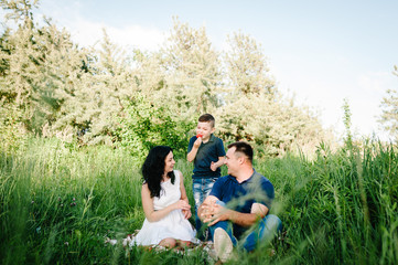 Happy young family on vacation eating strawberries together, outdoors. The father, mother, little boy having picnic on blanket, grass, nature. Portrait of mom, dad, son. The concept of family holiday.