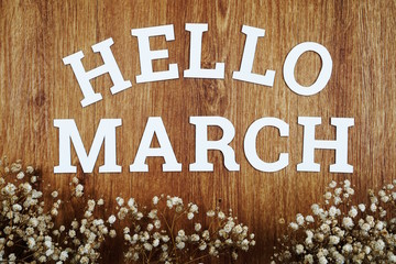 Hello March  alphabet letters with space copy and dried flower on wooden background