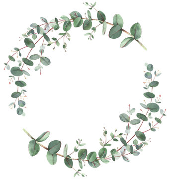 Eucalyptus wreath in circle frame composition