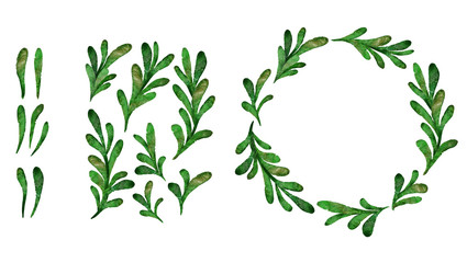 Watercolor green leaves clip art set. Isolated hand drawn plants on white background.