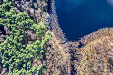 Aerial view of stunning lake and forest in Europe