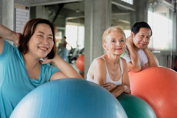 Group friend of senior at yoga gym posing leaning on her ball smiling and happy.  elderly healthy lifestyle.