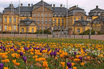 Blühende Krokusse vor dem Schloss in Bad Arolsen