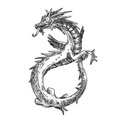Flying dragon. Sketch tattoo. Engraving style. Vector illustration.