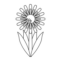 Beautiful flower with leaves cartoon in black and white
