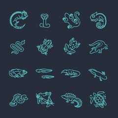 Reptiles and amphibians icons set. Line design