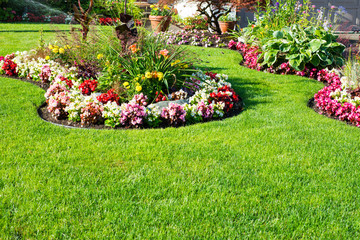 Beautiful spring, summer garden in full bloom. Fototapete
