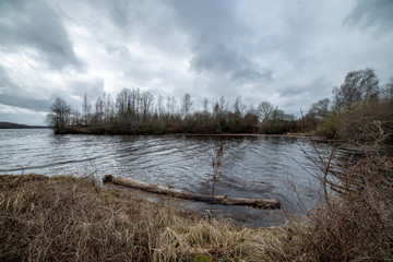 riverside landscape in latvia with dark water and dirty shore line
