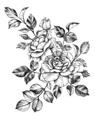 Hand drawn Bunch with Roses and Leaves