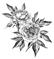 Hand drawn Floral Bunch with Peony Flowers