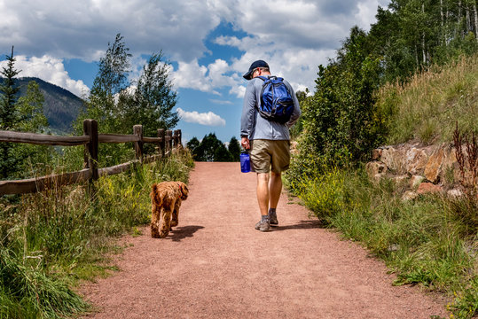 Man walking labradoodle dog on trail on hot day
