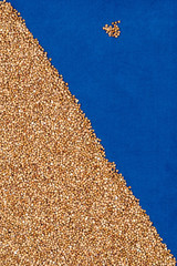 Buckwheat on blue cloth with scattered grains