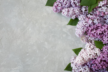 Lilac flowers on the background of gypsum plaster