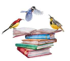 High books stack isolated on white background with three birds. Sketch handmade. Postcard for holiday. Watercolor illustration.